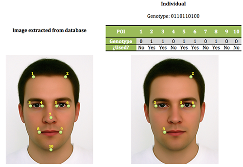 Darwin and Hadoop join forces to improve a face recognition